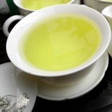 日照绿茶大众型