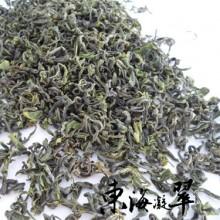 2013春茶/秋茶